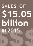 "Illustration indicating ""Sales of $15.5 billion in 2015"""