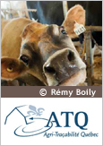 Close-up of a cow's head, courtesy of Rémy Boily, and the Agri-Traçabilité logo