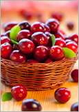Photo of a basket of cranberries
