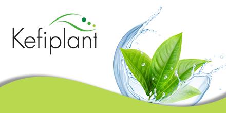 Logo de Kefiplant