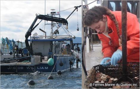 Photo d'un bateau et d'une employée de Fermes Marines du Québec au travail. Courtoisie de Fermes Marines du Québec.