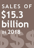 Illustration indicating sales of $15.3 billion in 2018
