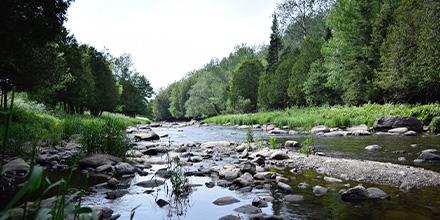 Photo d'une rivière prise dans le Parc de la Yamaska, Québec