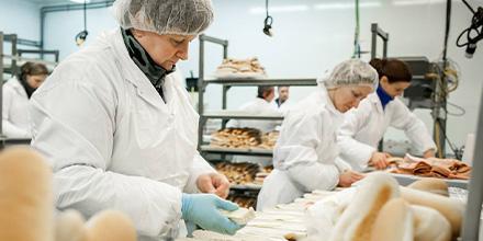 Photo d'employés préparant des sandwichs