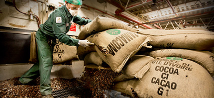 Photo of a Barry Callebaut employee handling bags of cocoa