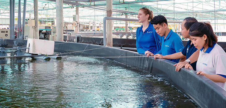 Photo des installations d'une entreprise d'aquaculture