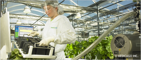 Photo of a woman working in a greenhouse